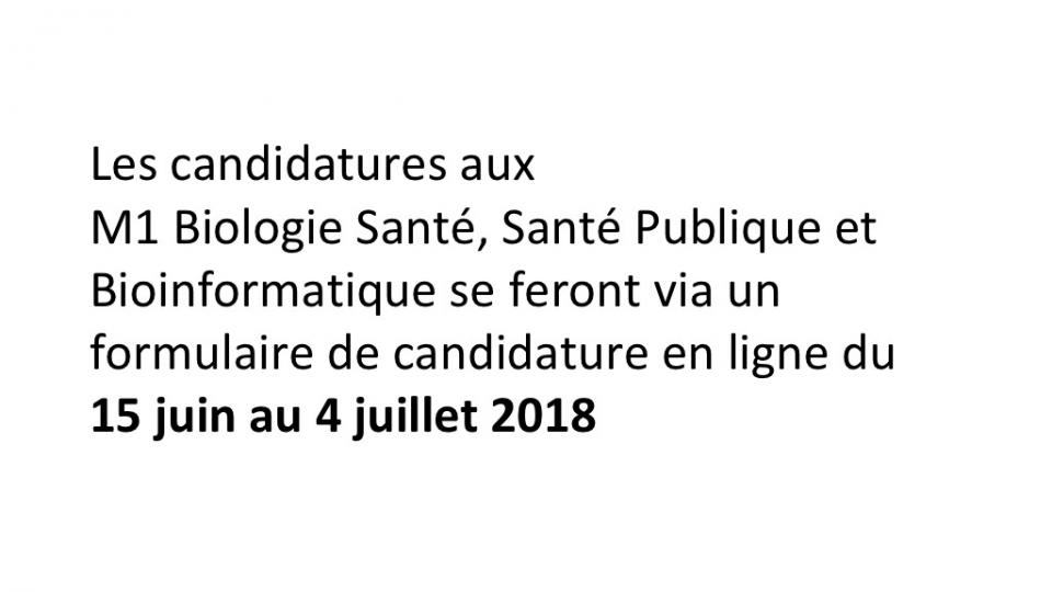 Candidature M1